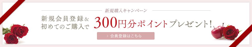 新規購入キャンペーン新規会員登録&初めてのご購入で300円分ポイントプレゼント!会員登録はこちら