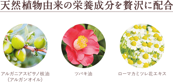 天然植物由来の美容成分を贅沢に配合/アルガニアスピサノ核油(アルガンオイル)/ツバキ油/ローマカミツレ花エキス