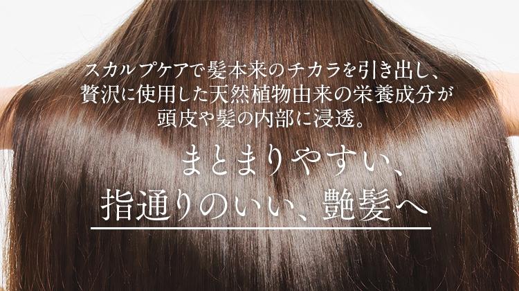 スカルプケアで髪本来のチカラを引き出し、贅沢に使用した美容成分が頭皮や髪の内部に浸透。まとまりやすい、指通りのいい、艶髪へ